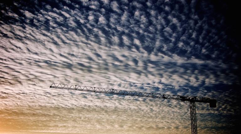 Crane-min.jpg